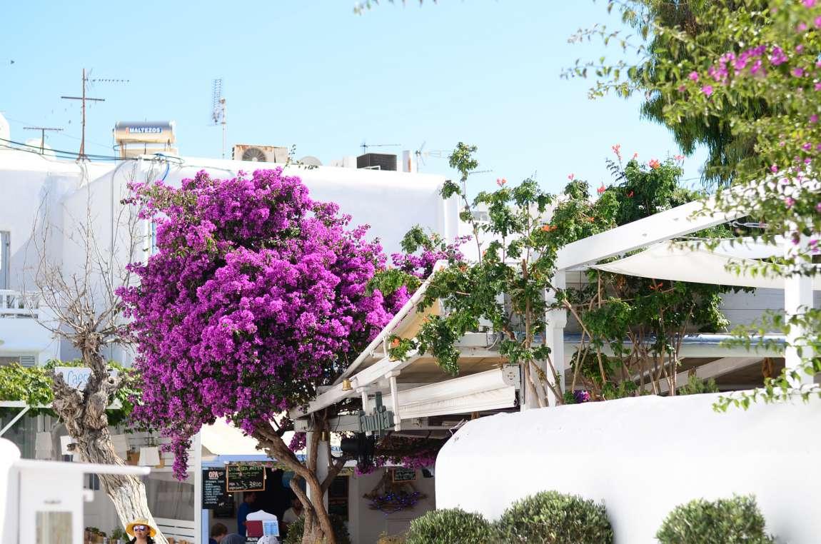 [TRAVELDIARY] MYKONOS IN GRIECHENLAND reiseblog-mykonos
